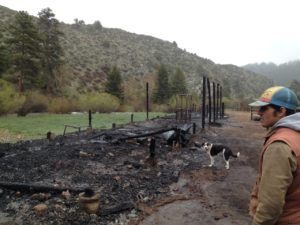 Townsend fire remnants